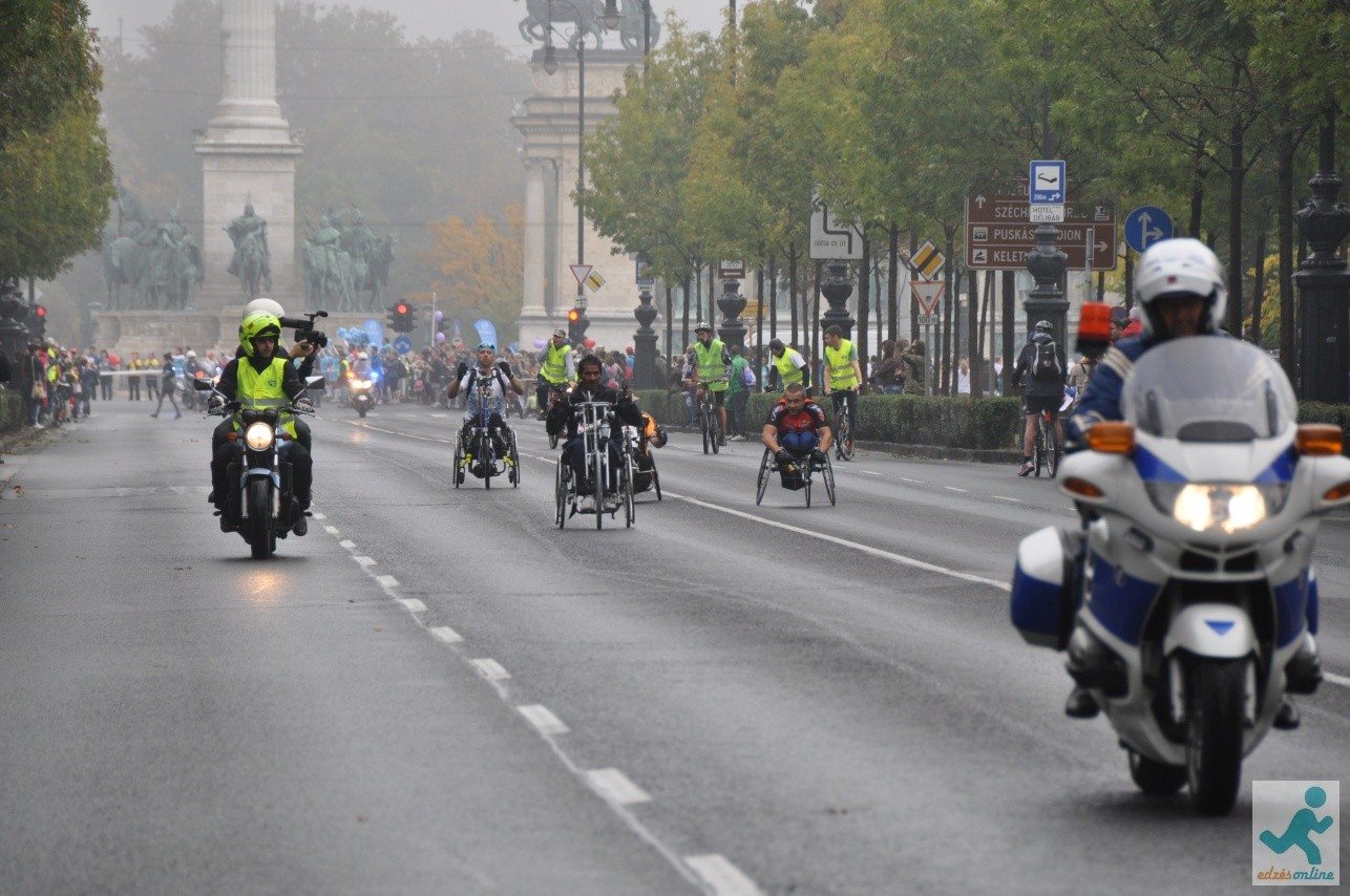 Bp maraton 2013